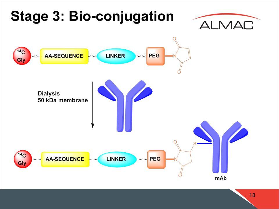 18 Stage 3: Bio-conjugation