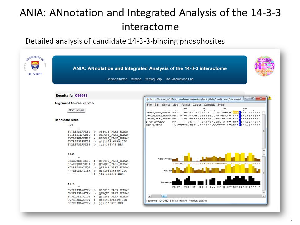 Detailed analysis of candidate 14-3-3-binding phosphosites ANIA: ANnotation and Integrated Analysis of the 14-3-3 interactome 7