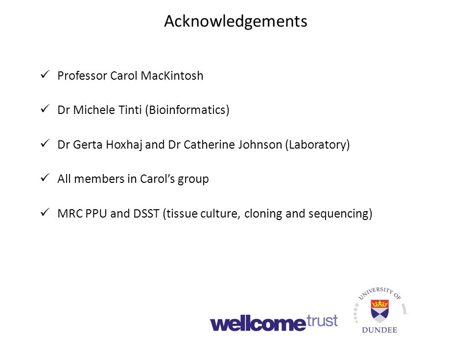Acknowledgements Professor Carol MacKintosh Dr Michele Tinti (Bioinformatics) Dr Gerta Hoxhaj and Dr Catherine Johnson (Laboratory) All members in Carol's group MRC PPU and DSST (tissue culture, cloning and sequencing)