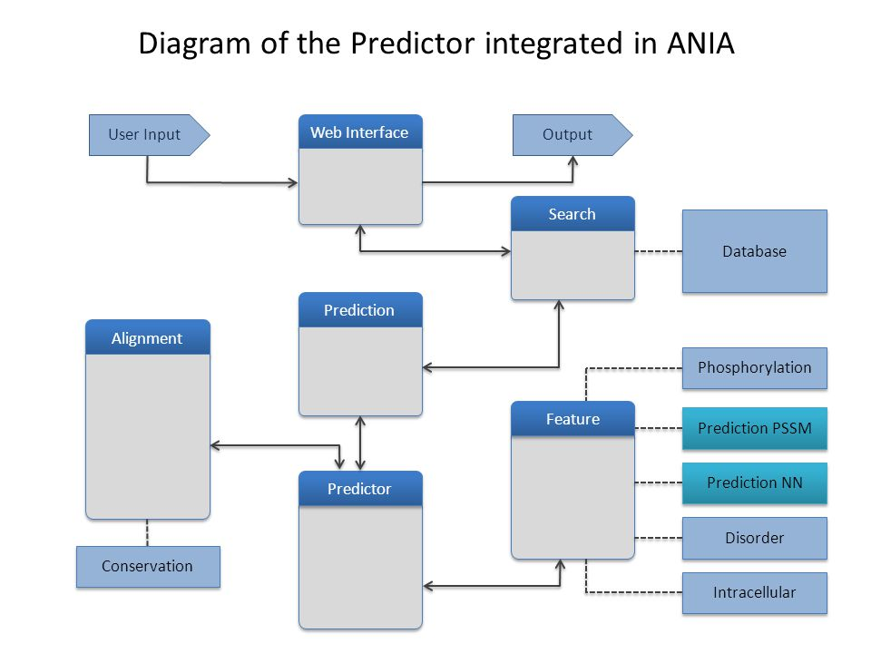 Prediction Search Predictor Alignment Web Interface Intracellular Disorder Prediction NN Prediction PSSM Phosphorylation Database Feature Conservation User InputOutput Diagram of the Predictor integrated in ANIA