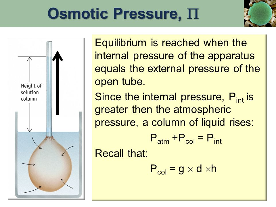 Equilibrium is reached when the internal pressure of the apparatus equals the external pressure of the open tube. Since the internal pressure, P int i