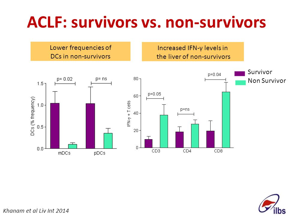 Increased IFN-γ levels in the liver of non-survivors ACLF: survivors vs. non-survivors Lower frequencies of DCs in non-survivors Survivor Non Survivor