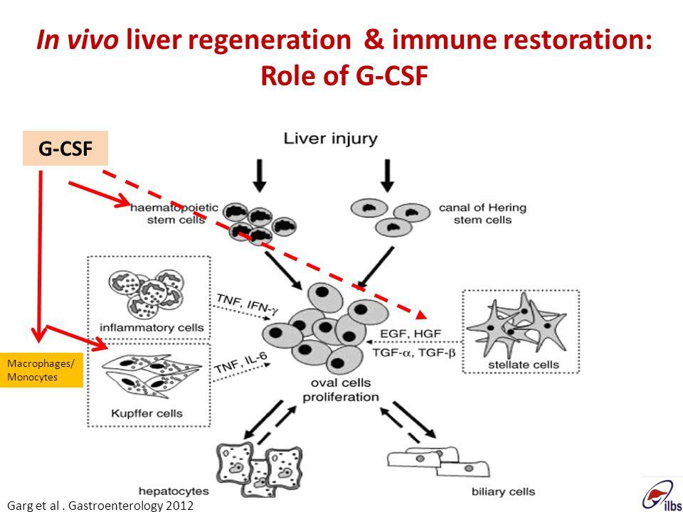 In vivo liver regeneration & immune restoration: Role of G-CSF G-CSF Macrophages/ Monocytes Garg et al. Gastroenterology 2012