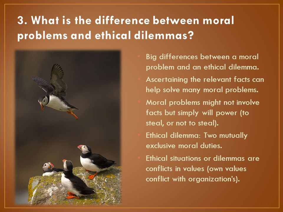 Big differences between a moral problem and an ethical dilemma. Ascertaining the relevant facts can help solve many moral problems. Moral problems mig
