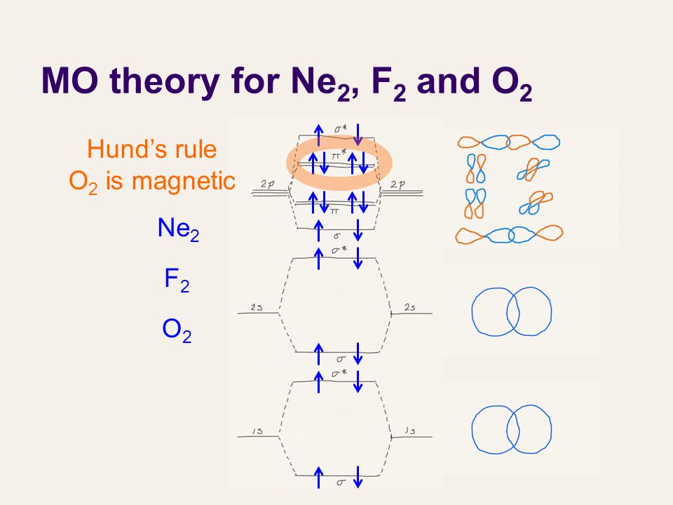 MO theory for Ne 2, F 2 and O 2 Ne 2 F2F2 O2O2 Hund's rule O 2 is magnetic