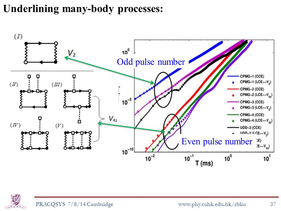 Underlining many-body processes: Odd pulse number Even pulse number PRACQSYS 7/8/14 Cambridge www.phy.cuhk.edu.hk/rbliu 37