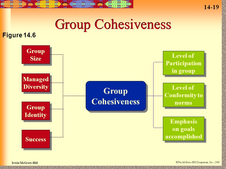 14-19 Irwin/McGraw-Hill ©The McGraw-Hill Companies, Inc., 2000 Group Cohesiveness Group Size Group Size Managed Diversity Managed Diversity Group Identity Group Identity Success Group Cohesiveness Group Cohesiveness Level of Conformity to norms Level of Conformity to norms Level of Participation in group Level of Participation in group Emphasis on goals accomplished Emphasis on goals accomplished Figure 14.6