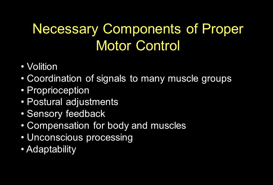 Motor control requires sensory input The case of Ian Waterman Lost all somatosensory and proprioceptive input Initially unable to make any coordinated movement After years of practice he trained himself to make movement under visual guidance Requires total concentration to move and even maintain posture Collapses to ground when lights unexpectedly go out Jonathan Cole, Pride and a Daily Marathon, MIT Press, 1995.
