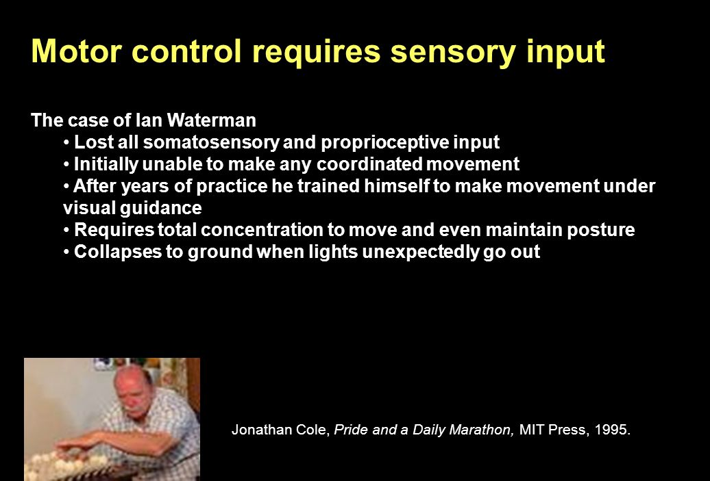The Man Who Lost His Body 1998 BBC documentary Ian Waterman, age 19 Lost all somatosensory and proprioceptive input Initially unable to make any coordinated movement After years of practice he trained himself to make movement under visual guidance Requires total concentration to move and even maintain posture Collapses to ground when lights unexpectedly go out