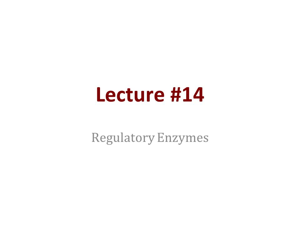 Lecture #14 Regulatory Enzymes