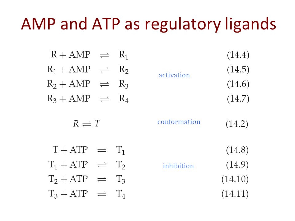 AMP and ATP as regulatory ligands activation inhibition conformation