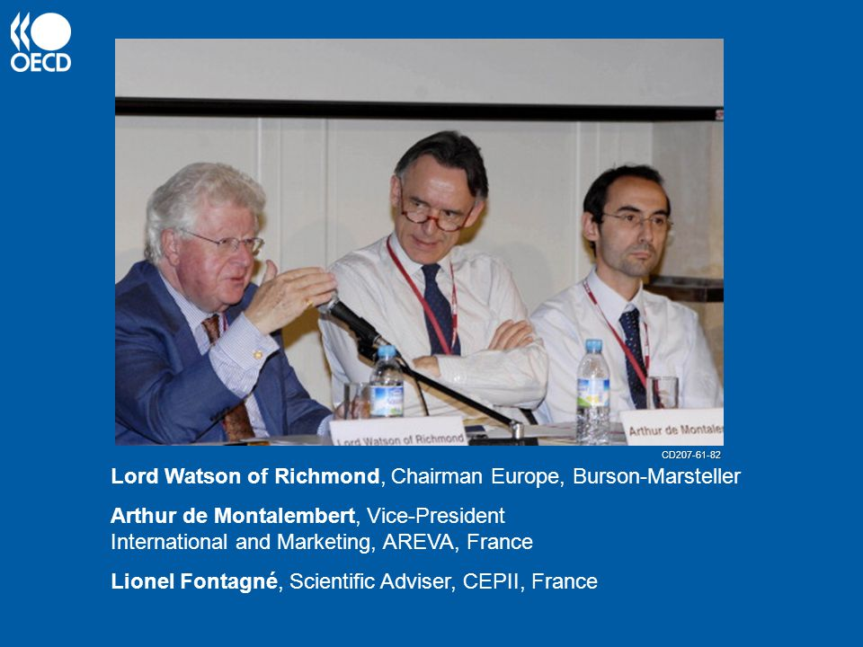 Lord Watson of Richmond, Chairman Europe, Burson-Marsteller Arthur de Montalembert, Vice-President International and Marketing, AREVA, France Lionel Fontagné, Scientific Adviser, CEPII, France CD207-61-82