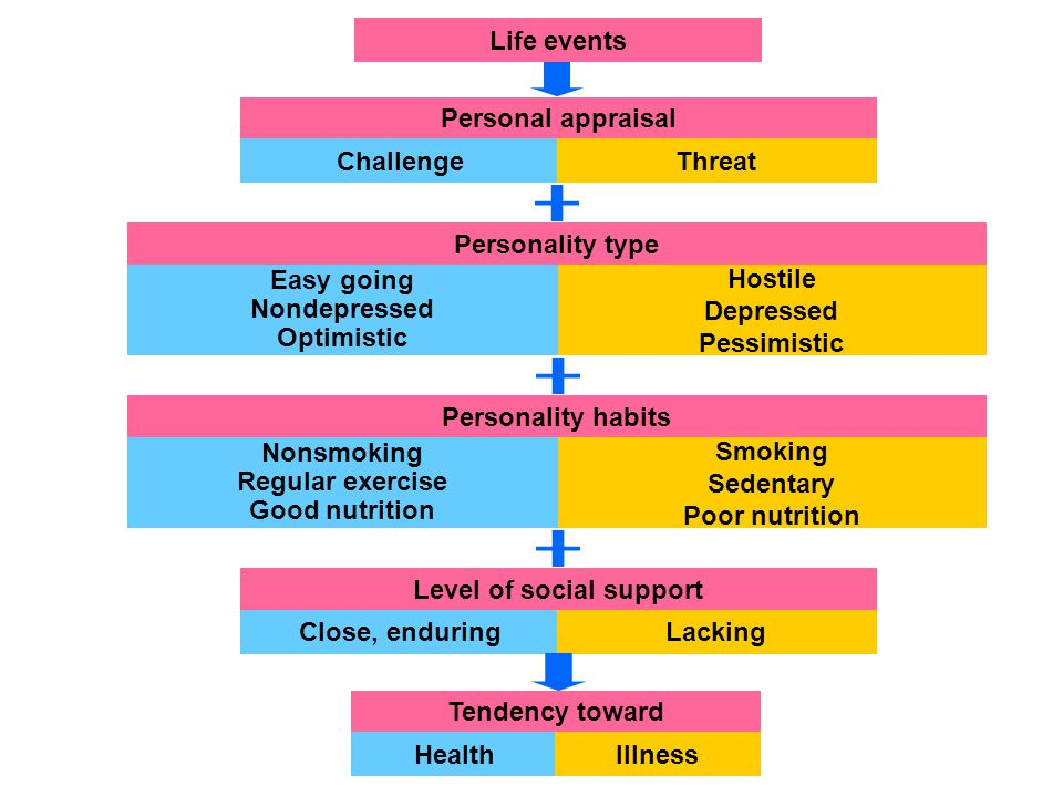 Life events Tendency toward HealthIllness Personal appraisal ChallengeThreat Personality type Easy going Nondepressed Optimistic Hostile Depressed Pes