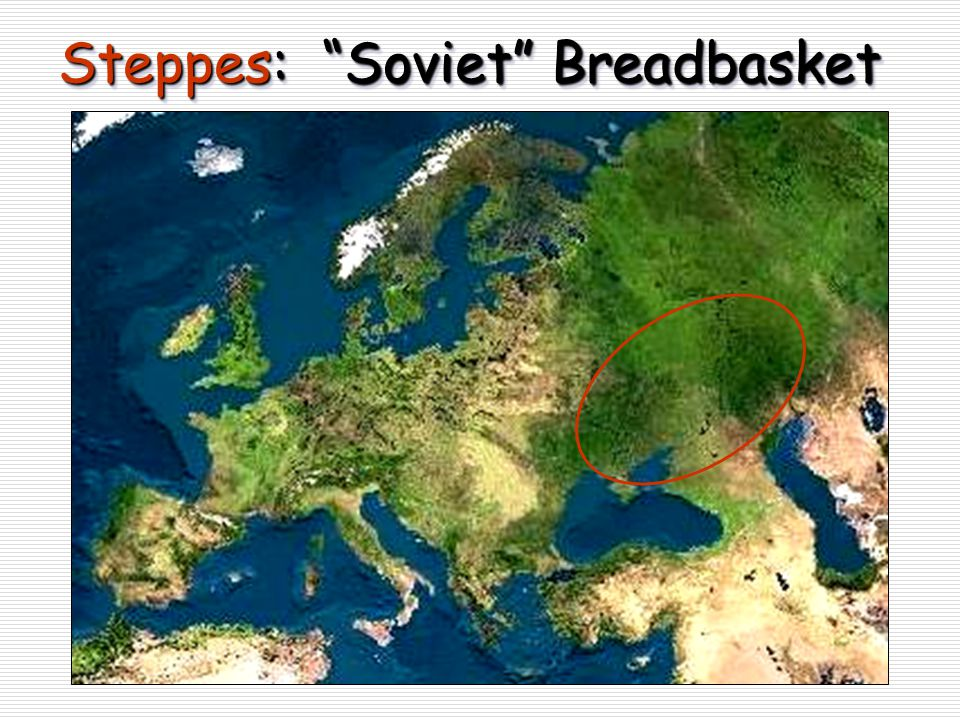 "Steppes: ""Soviet"" Breadbasket"