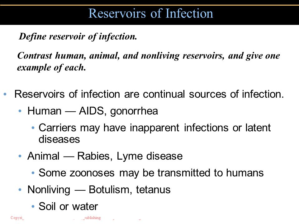 Copyright © 2004 Pearson Education, Inc., publishing as Benjamin Cummings Reservoirs of infection are continual sources of infection.