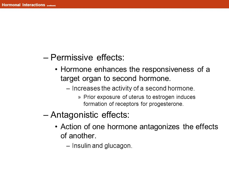 Hormonal Interactions (continued) –Permissive effects: Hormone enhances the responsiveness of a target organ to second hormone.