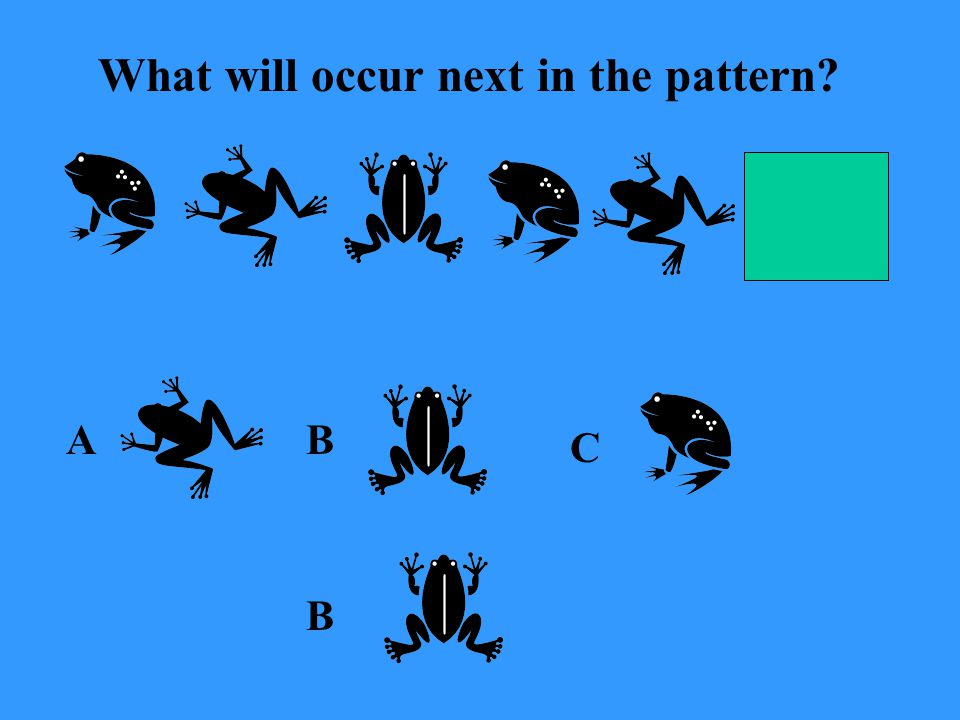 What will occur next in the pattern A C B B