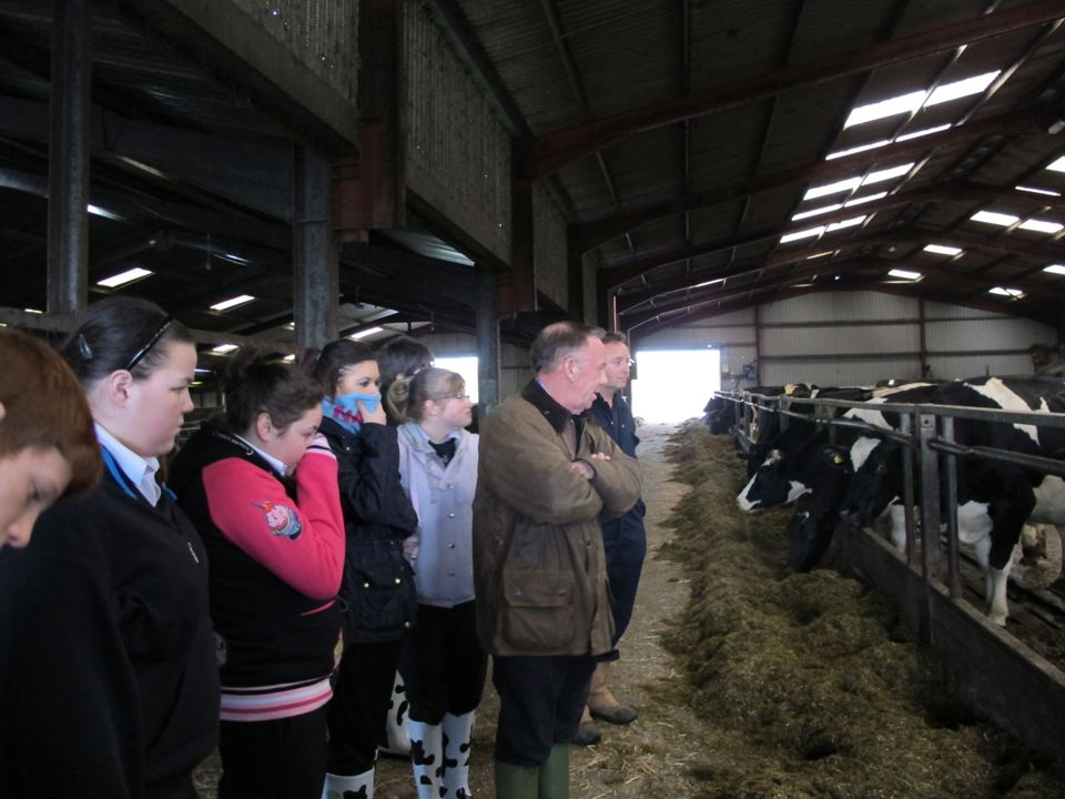 We visited a farm to find out how milk was produced
