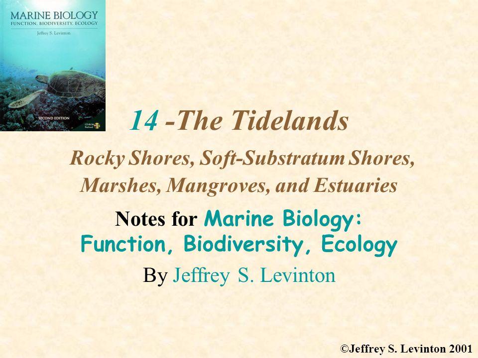 Estuaries - Biodiversity 2 There is a critical salinity range, ca.