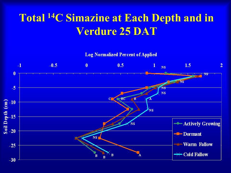 Total 14 C Simazine at Each Depth and in Verdure 25 DAT