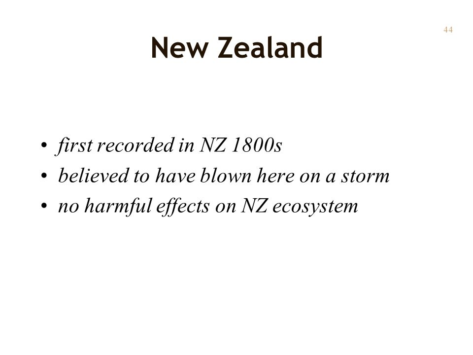 44 New Zealand first recorded in NZ 1800s believed to have blown here on a storm no harmful effects on NZ ecosystem