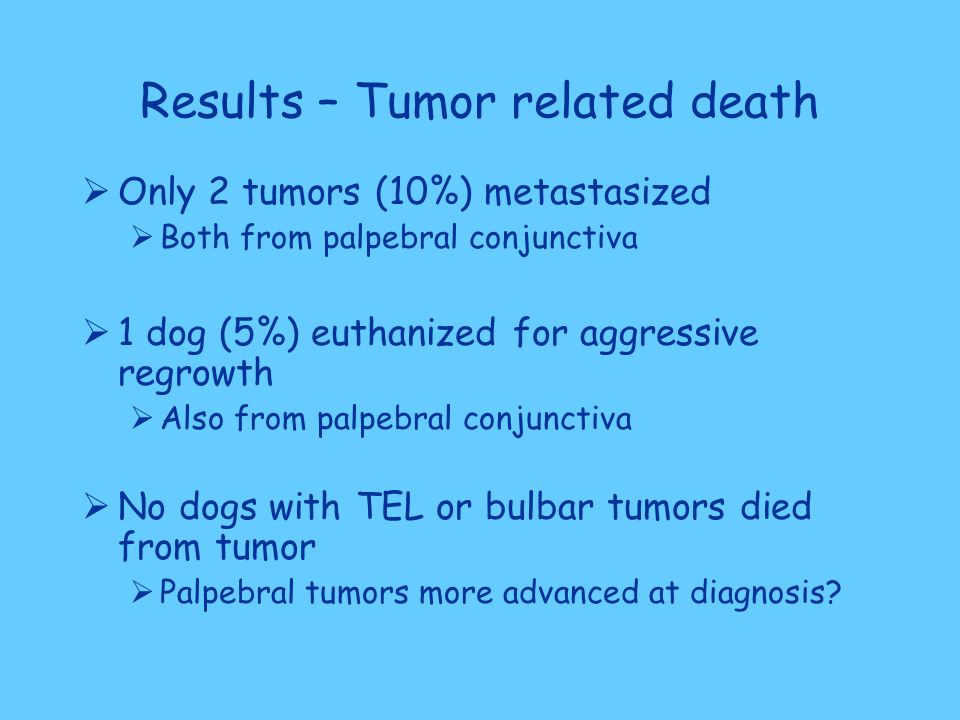 Results – Tumor related death  Only 2 tumors (10%) metastasized  Both from palpebral conjunctiva  1 dog (5%) euthanized for aggressive regrowth  Also from palpebral conjunctiva  No dogs with TEL or bulbar tumors died from tumor  Palpebral tumors more advanced at diagnosis?