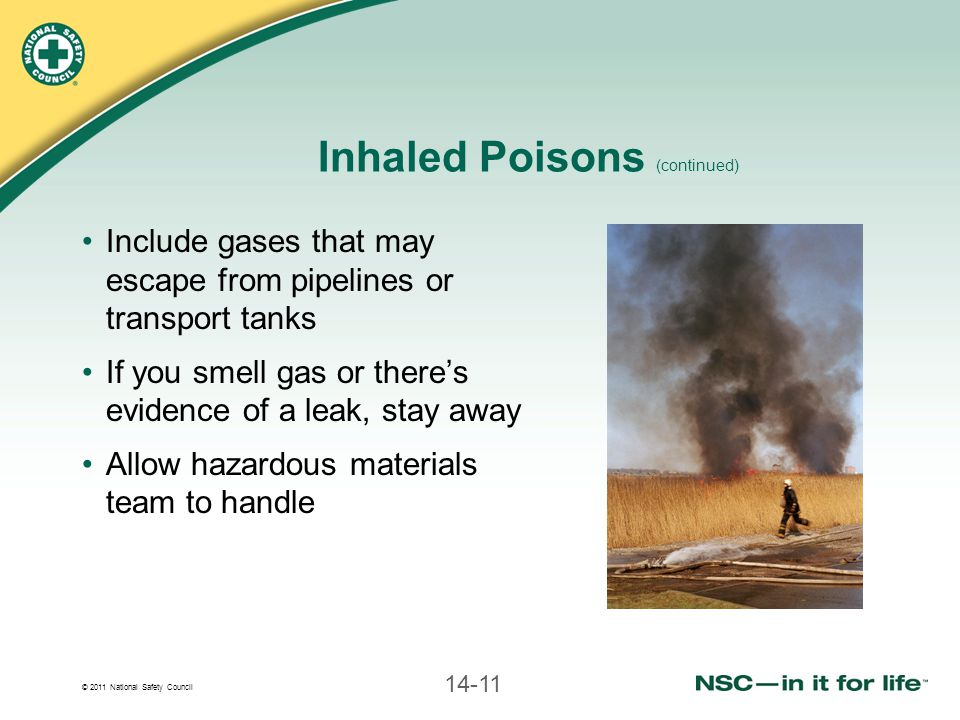 © 2011 National Safety Council 14-11 Inhaled Poisons (continued) Include gases that may escape from pipelines or transport tanks If you smell gas or t