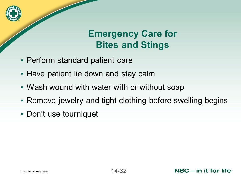 © 2011 National Safety Council 14-32 Emergency Care for Bites and Stings Perform standard patient care Have patient lie down and stay calm Wash wound with water with or without soap Remove jewelry and tight clothing before swelling begins Don't use tourniquet