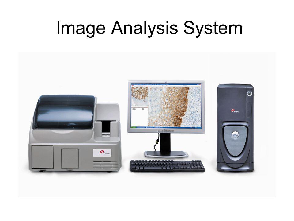 Image Analysis System