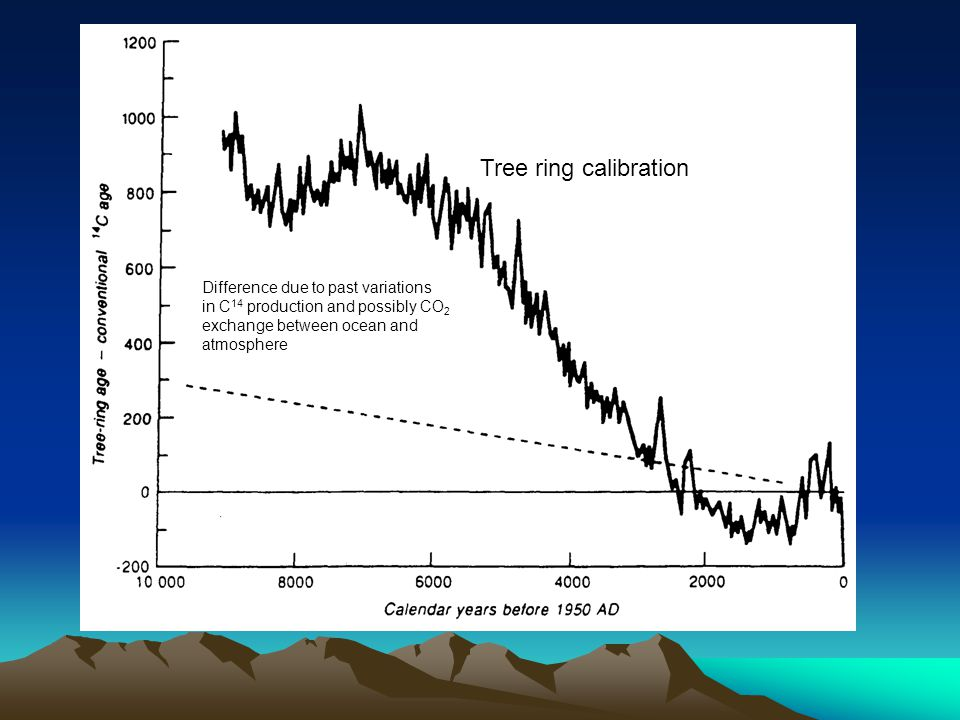 Difference due to past variations in C 14 production and possibly CO 2 exchange between ocean and atmosphere Tree ring calibration