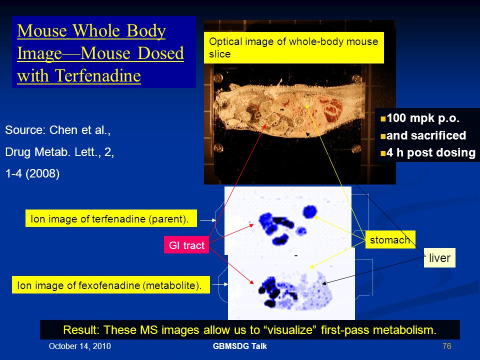 75 October 14, 2010 GBMSDG Talk Next Step: Whole Mouse Slice MS Imaging