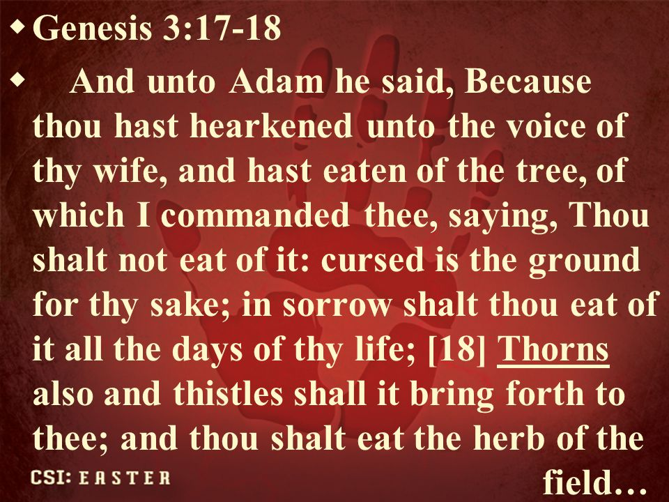  Numbers 33:55  But if ye will not drive out the inhabitants of the land from before you; then it shall come to pass, that those which ye let remain of them shall be pricks in your eyes, and thorns in your sides, and shall vex you in the land wherein ye dwell.