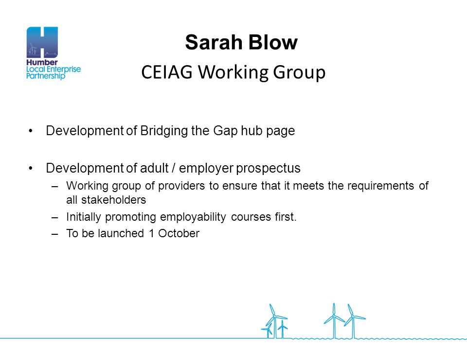 CEIAG Working Group Sarah Blow Development of Bridging the Gap hub page Development of adult / employer prospectus –Working group of providers to ensu