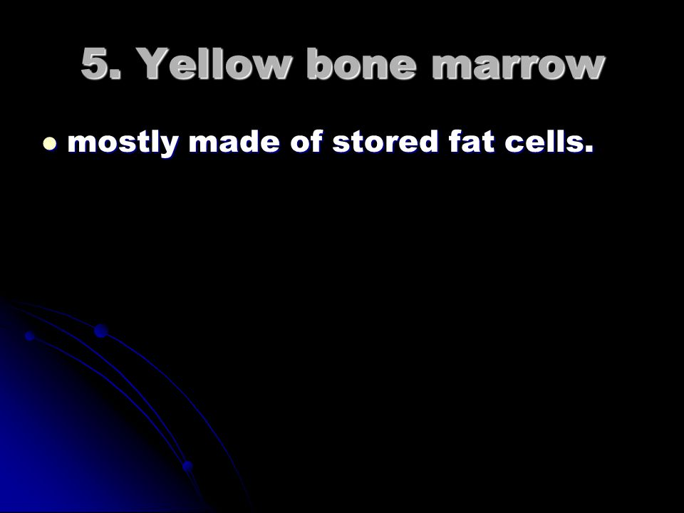 4. Red bone marrow help in red blood cell formation.
