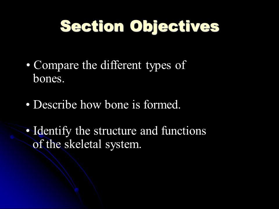 Interesting facts The longest bone in your body is the bone above your knee, the thighbone.