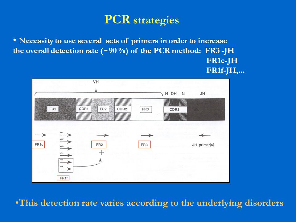PCR strategies Necessity to use several sets of primers in order to increase the overall detection rate (~90 %) of the PCR method: FR3 -JH FR1c-JH FR1