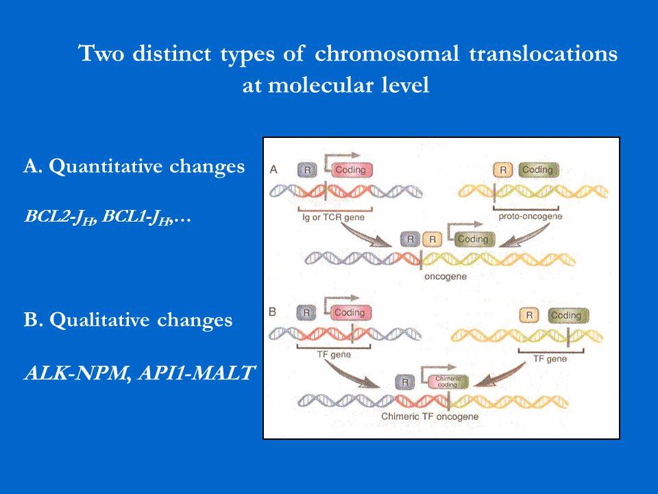 Two distinct types of chromosomal translocations at molecular level A. Quantitative changes BCL2-J H, BCL1-J H,… B. Qualitative changes ALK-NPM, API1-