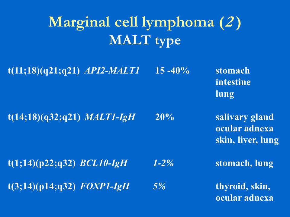 Marginal cell lymphoma (2 ) MALT type t(11;18)(q21;q21) API2-MALT1 15 -40% stomach intestine lung t(14;18)(q32;q21) MALT1-IgH 20% salivary gland ocula