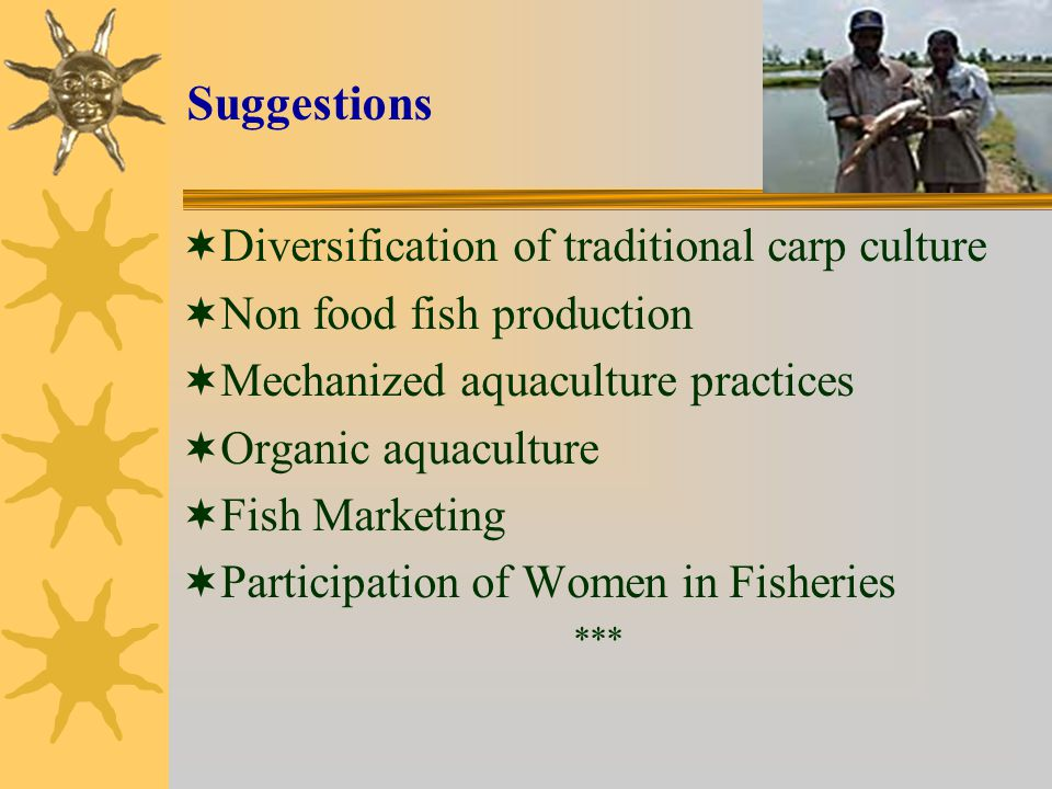 Suggestions  Diversification of traditional carp culture  Non food fish production  Mechanized aquaculture practices  Organic aquaculture  Fish Marketing  Participation of Women in Fisheries ***