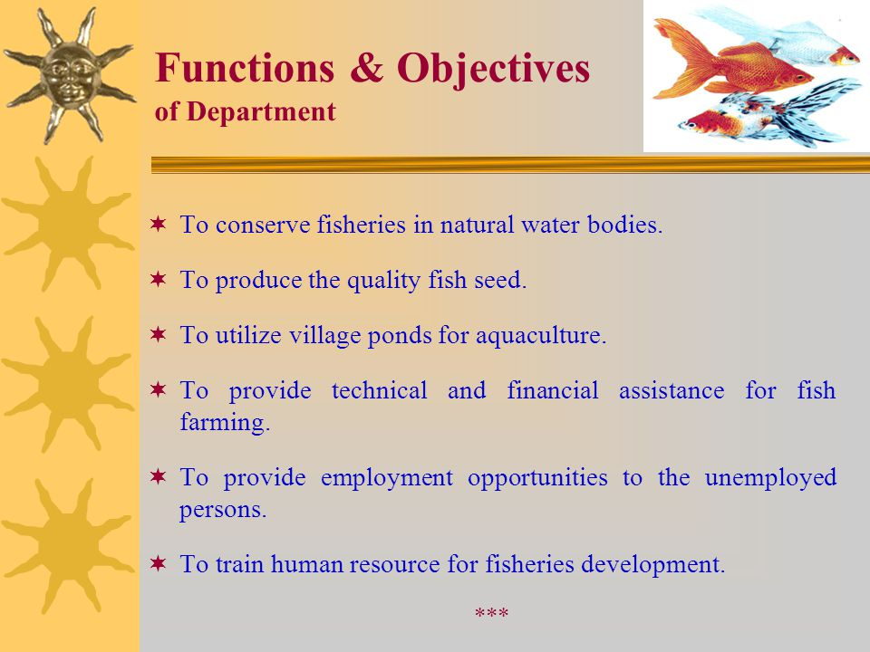 Functions & Objectives of Department  To conserve fisheries in natural water bodies.