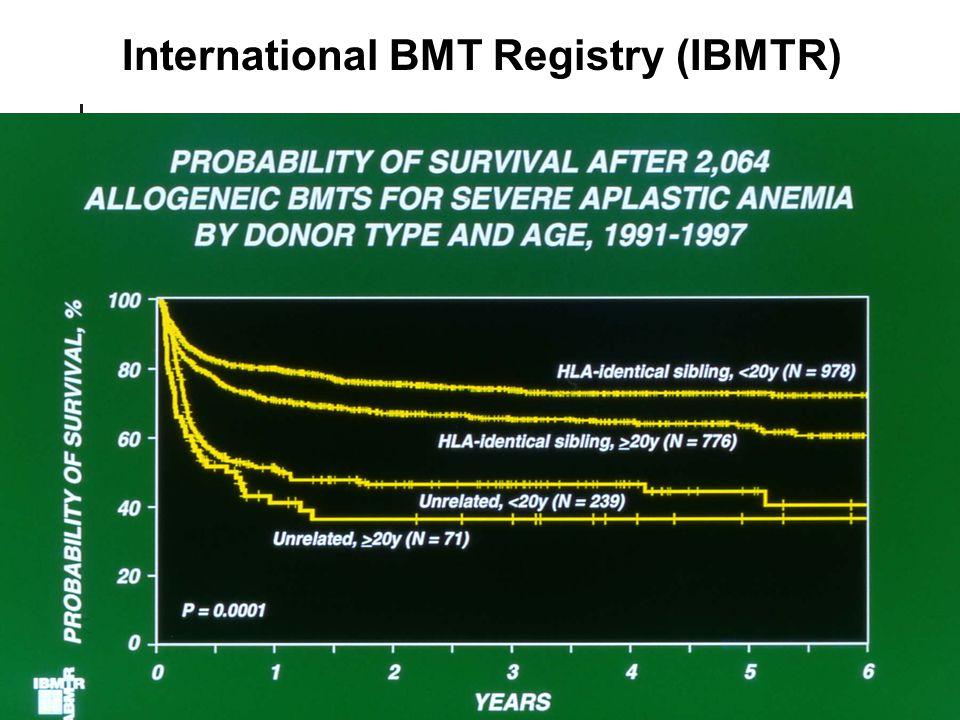 International BMT Registry (IBMTR)