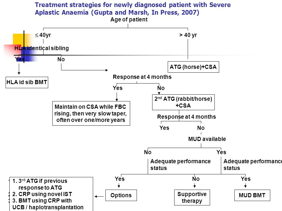 Treatment strategies for newly diagnosed patient with Severe Aplastic Anaemia (Gupta and Marsh, In Press, 2007) Age of patient  40yr > 40 yr HLA identical sibling YesNo Response at 4 months YesNo Response at 4 months YesNo MUD available No Yes Adequate performance status Adequate performance status Yes NoYes MUD BMT Supportive therapy Options 1.