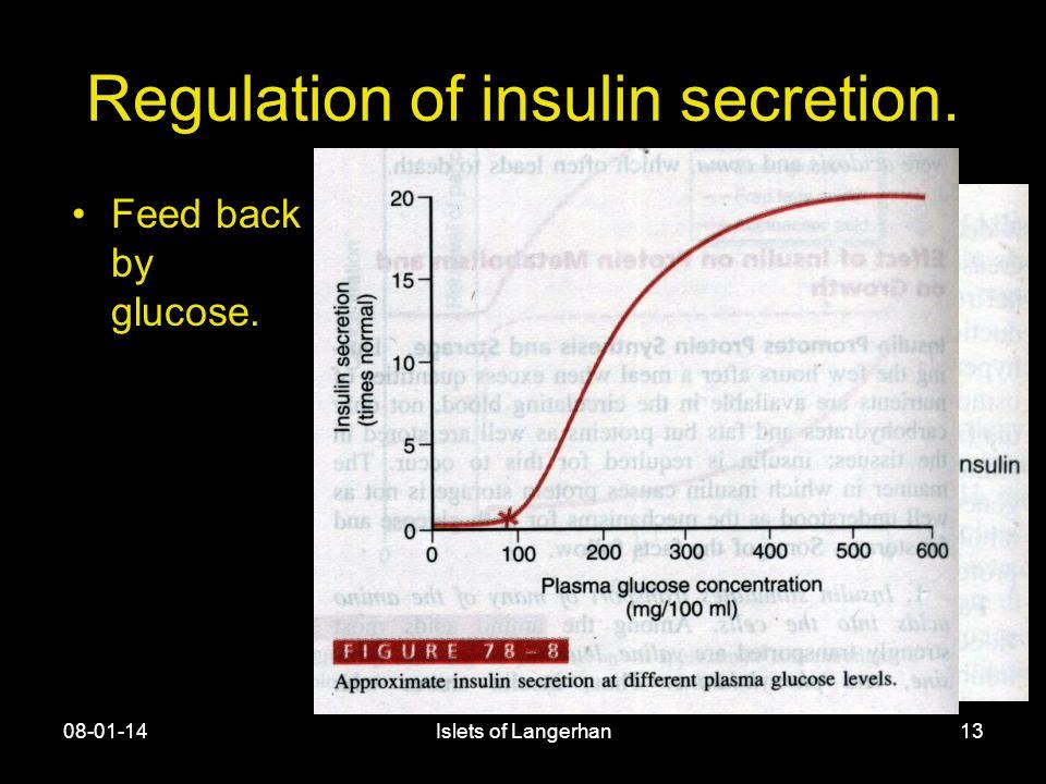 08-01-14Islets of Langerhan13 Regulation of insulin secretion. Feed back by glucose.