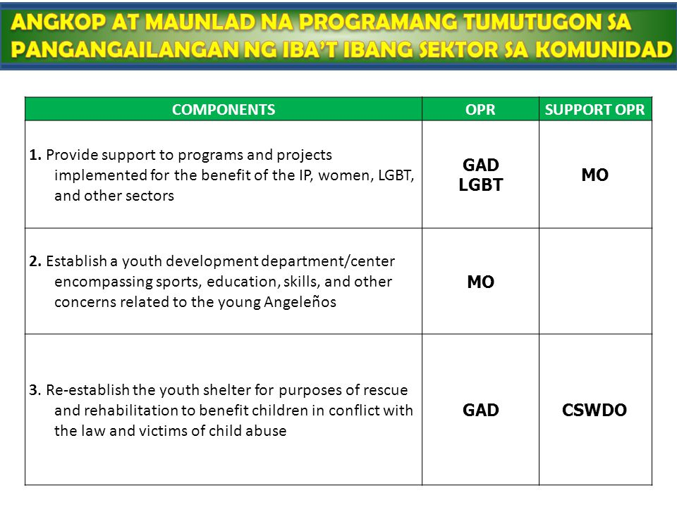 COMPONENTSOPRSUPPORT OPR 1. Provide support to programs and projects implemented for the benefit of the IP, women, LGBT, and other sectors GAD LGBT MO
