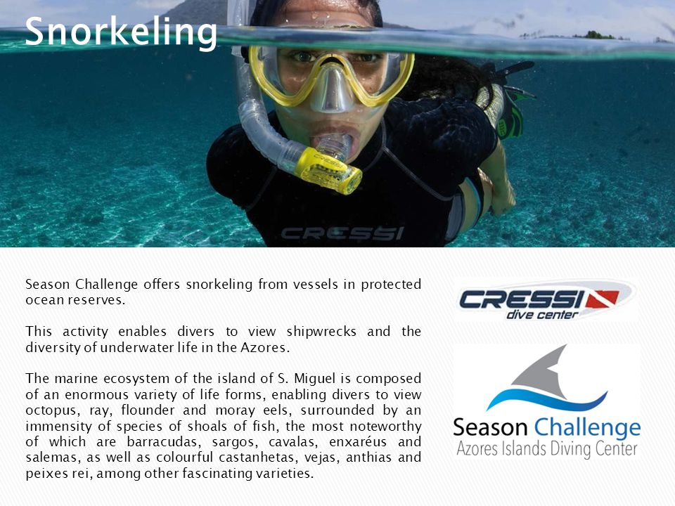 Snorkeling Season Challenge offers snorkeling from vessels in protected ocean reserves.