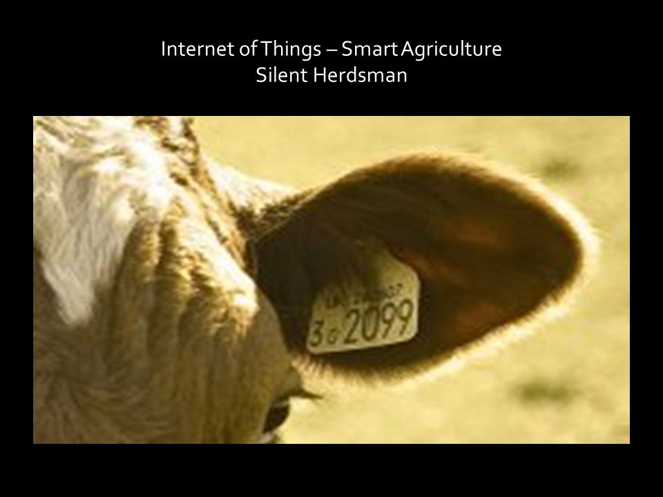 Internet of Things – Smart Agriculture Silent Herdsman