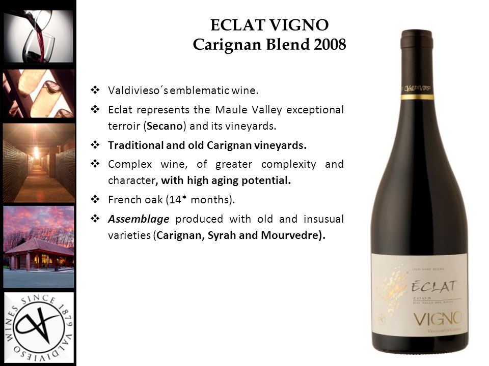 ECLAT VIGNO Carignan Blend 2008  Valdivieso´s emblematic wine.  Eclat represents the Maule Valley exceptional terroir (Secano) and its vineyards. 