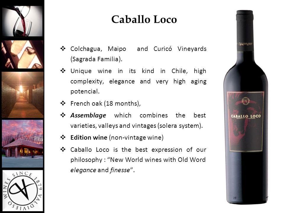 Caballo Loco  Colchagua, Maipo and Curicó Vineyards (Sagrada Familia).  Unique wine in its kind in Chile, high complexity, elegance and very high ag