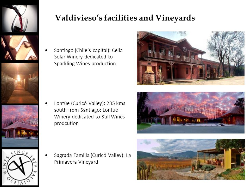 Valdivieso's facilities and Vineyards Santiago (Chile´s capital): Celia Solar Winery dedicated to Sparkling Wines production Lontúe (Curicó Valley): 2