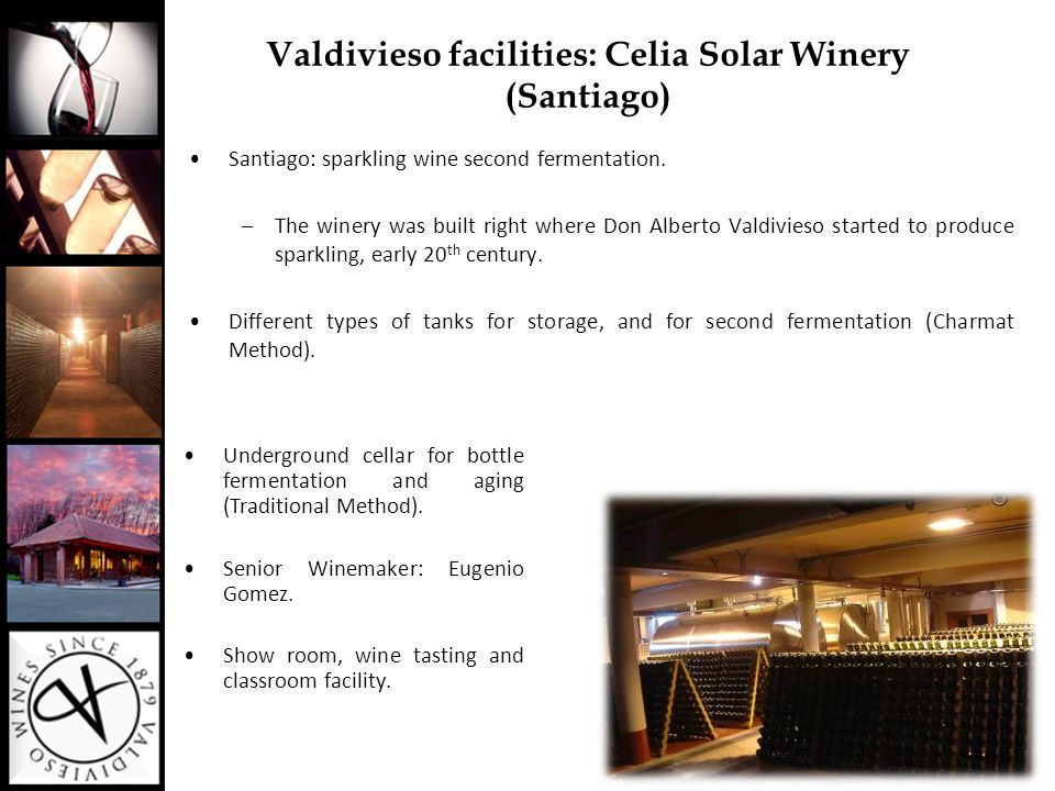 Valdivieso facilities: Lontué Winery (Curicó Valley) Base wines for sparkling wines and still wines.